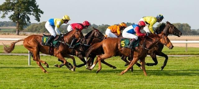 Sisteme de pariere pe cursele de cai